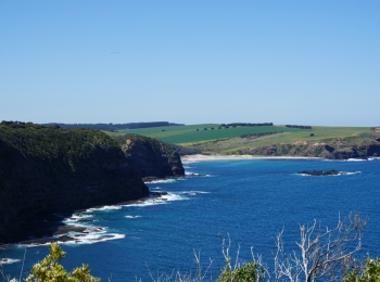 Mornington Peninsula Guided Walks