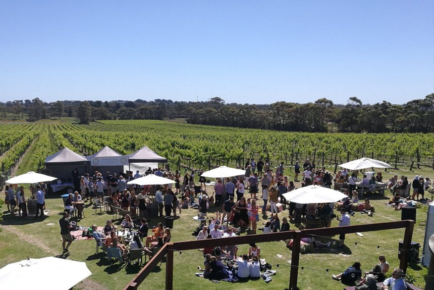 stumpy gully wines